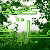 eid al adha photos, what is eid ul adha, eid al adha pictures, 2012 indian festivals, bakrid mubarak, muslim festival eid, eid adha pictures,