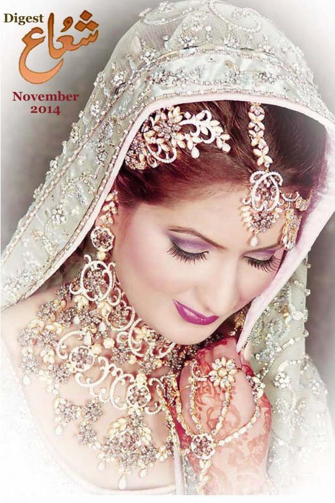 November Shuaa Digest