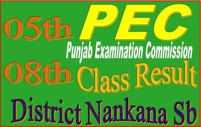 8 class result Nankana Sahib