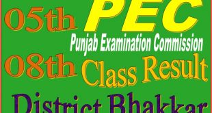 8 class result Bhakkar