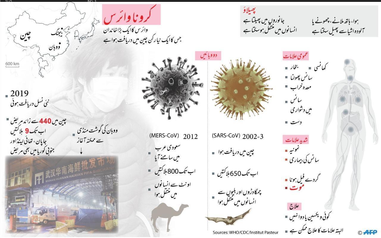 description of coronavirus